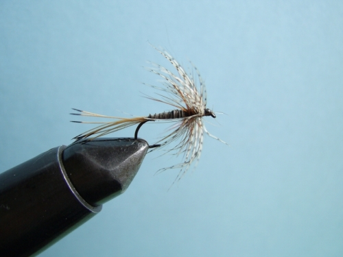 Soft hackle mayfly