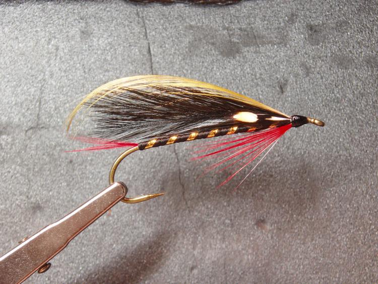feather wing black prince streamer