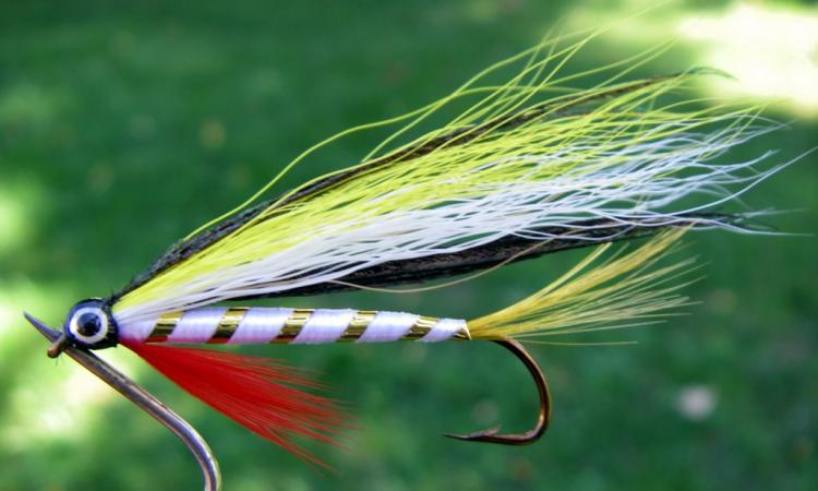 White Gold Streamer