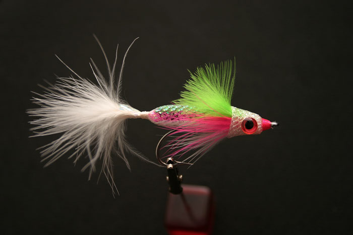 EZ-Body Minnow (Rainbow Trout)