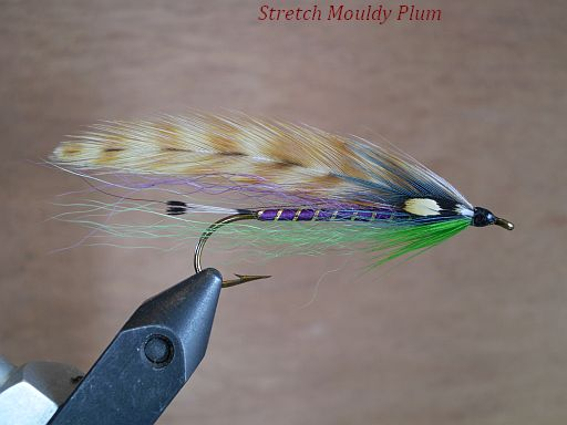 Stretched Mouldy Plum.     a fun fly