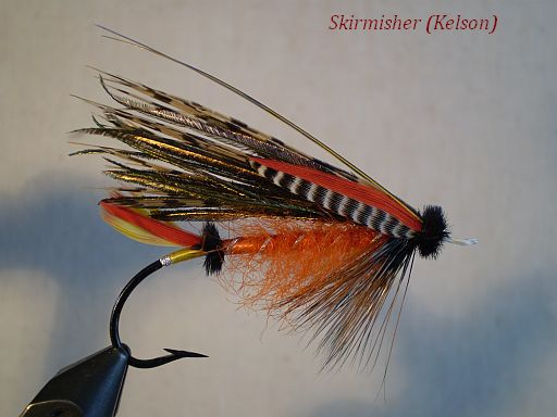 The Skirmisher (Kelson)