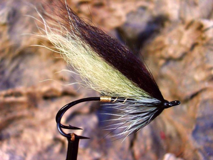 Salmon fly of Black line