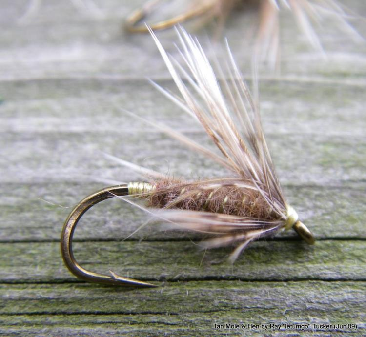 Tan Mole and Hen (Soft Hackle)