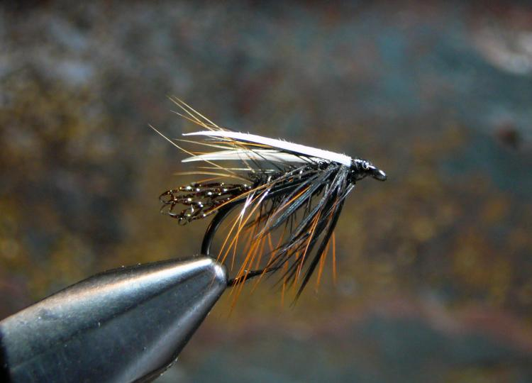 Furnace and Biot Wet Fly