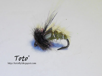 Emerging Caddis squirrel tail by Toto�